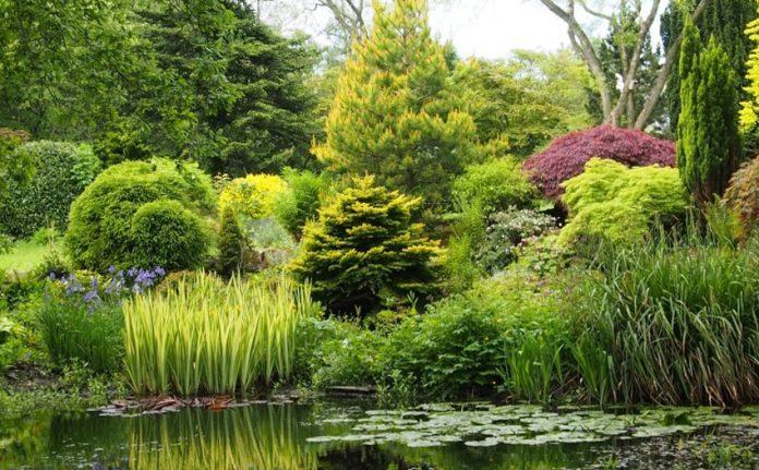 National garden scheme.