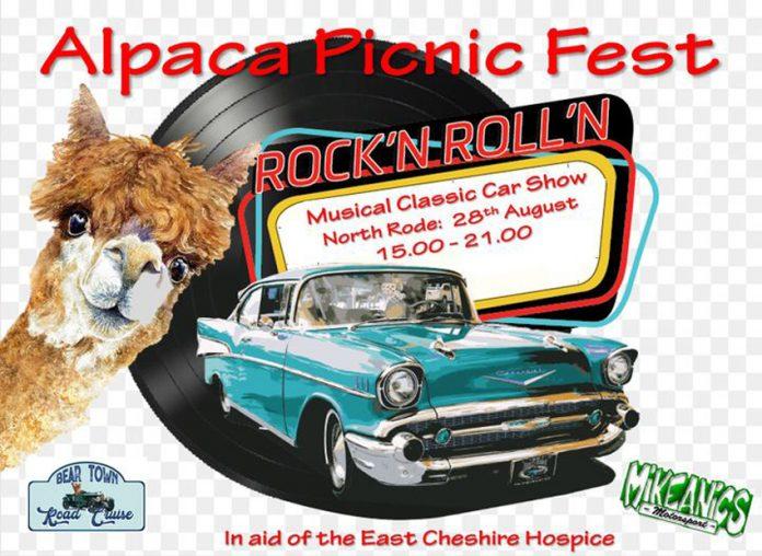 Alpaca Picnic Fest.